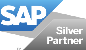 Clarkston SAP Silver Partner