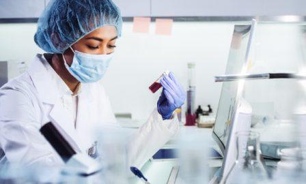 embedding sciences